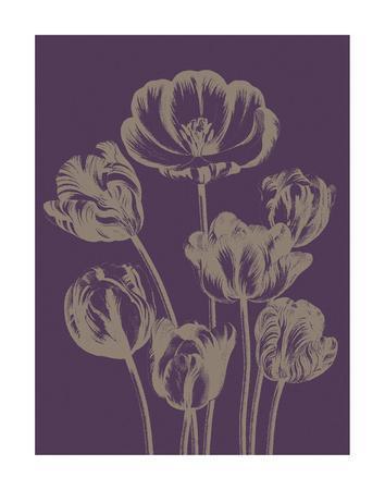https://imgc.artprintimages.com/img/print/tulip-13_u-l-f8cpgh0.jpg?p=0