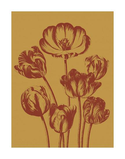 Tulip 15-Botanical Series-Art Print