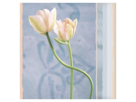 Tulip and Blue Tapestry I-Richard Sutton-Art Print