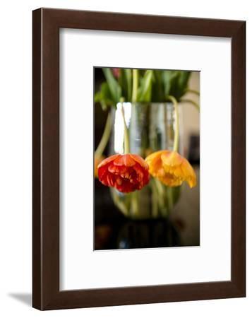 Tulip blossoms on black table-Christine Meder stage-art.de-Framed Photographic Print