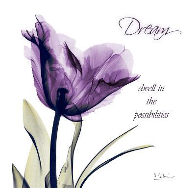 Tulip Dream-Albert Koetsier-Art Print