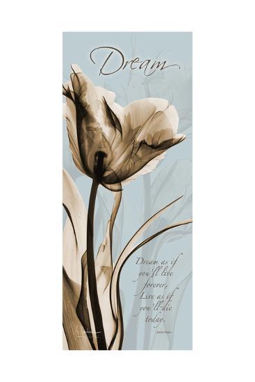 Tulip Dream-Albert Koetsier-Premium Giclee Print