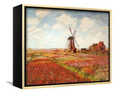 Tulip Fields with the Rijnsburg Windmill-Claude Monet-Framed Canvas Print
