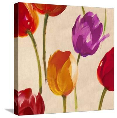 Tulip Funk (detail)-Luca Villa-Stretched Canvas Print