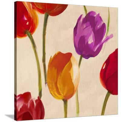 Tulip Funk (detail)-Luca Villa-Stretched Canvas Print