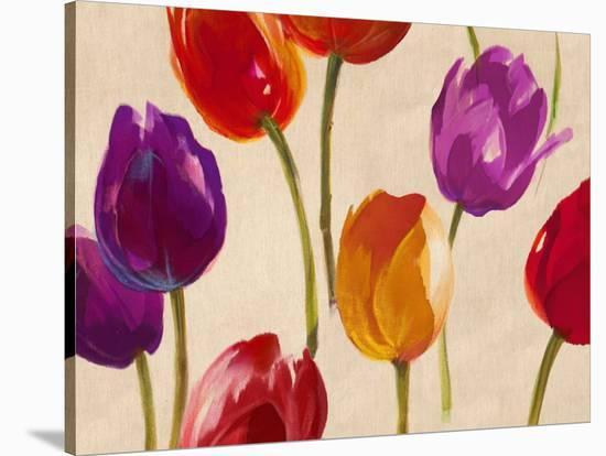 Tulip Funk-Luca Villa-Stretched Canvas Print