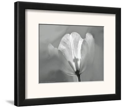 Tulip II-Dennis Frates-Framed Art Print