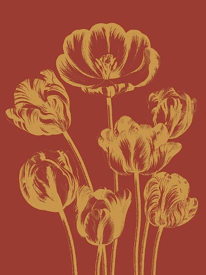 Tulip, no. 16--Art Print