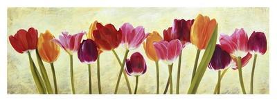 https://imgc.artprintimages.com/img/print/tulip-parade_u-l-f5fcbd0.jpg?p=0