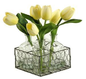 Tulip Stem Bottle & Tray Set
