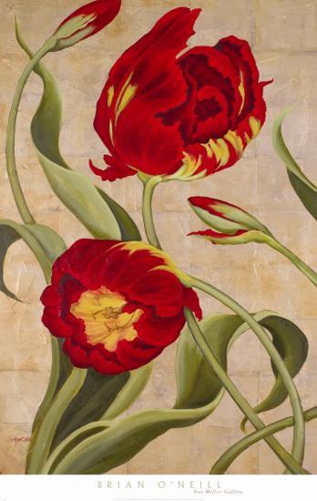 Tulip Tango I-Brian O?neill-Art Print