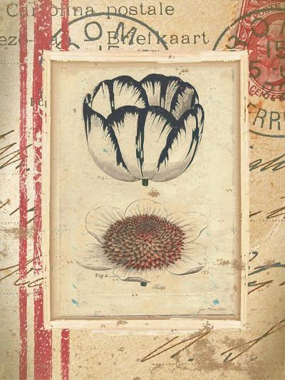 Tulip-Jo Moulton-Art Print