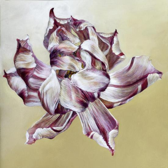 Tulipa, 2013-Odile Kidd-Giclee Print