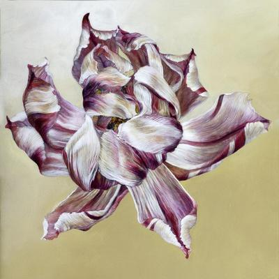 https://imgc.artprintimages.com/img/print/tulipa-2013_u-l-q1dyduf0.jpg?p=0