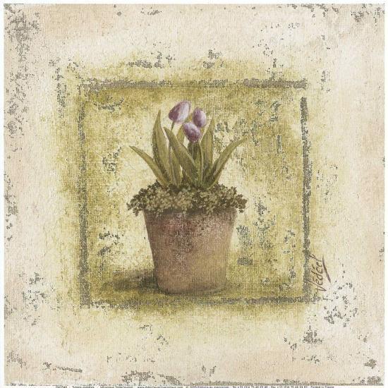 Tulipes Violettes-V?ronique Didier-Laurent-Art Print