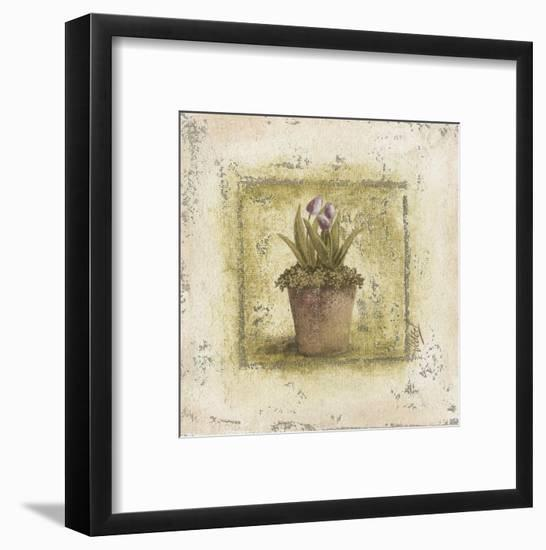 Tulipes Violettes-Véronique Didier-Laurent-Framed Art Print