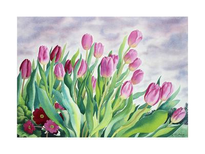https://imgc.artprintimages.com/img/print/tulips-by-window_u-l-q1dzrt10.jpg?p=0