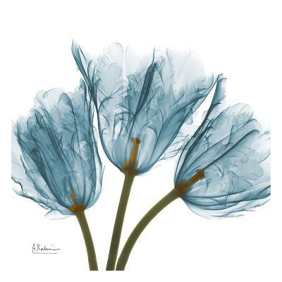 Tulips in Blue-Albert Koetsier-Art Print