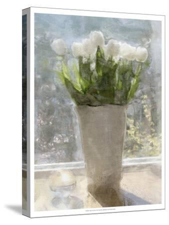 Tulips in the Sun-Noah Bay-Stretched Canvas Print