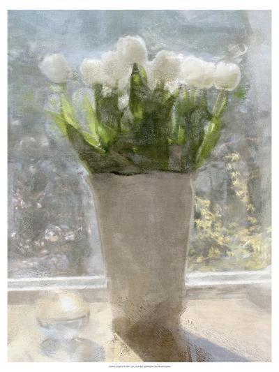 Tulips in the Sun-Noah Bay-Premium Giclee Print