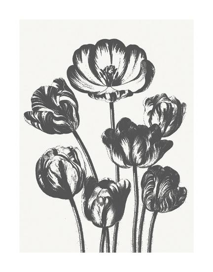 Tulips (Ivory & Ink)-Botanical Series-Art Print