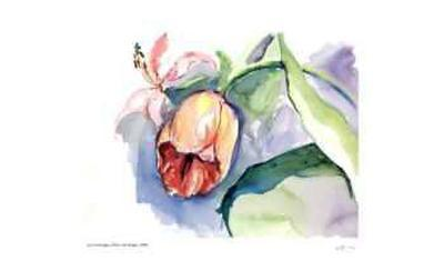 Tulips with Purple-Lynn Donoghue-Limited Edition