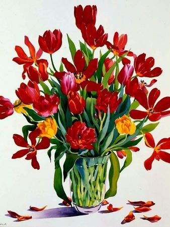 https://imgc.artprintimages.com/img/print/tulips_u-l-pjdg9m0.jpg?p=0