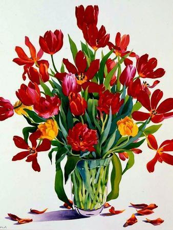 https://imgc.artprintimages.com/img/print/tulips_u-l-pjdg9x0.jpg?p=0
