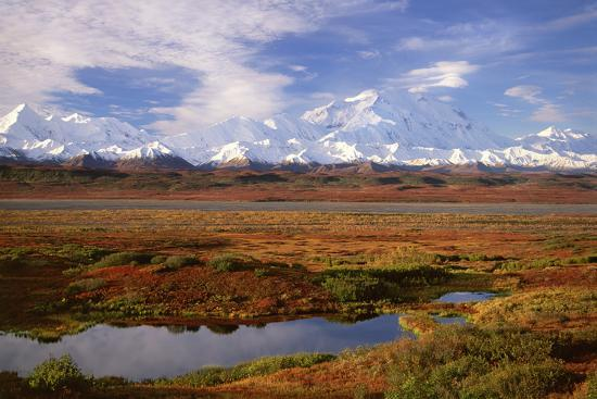 Tundra and Kettle Pond in Denali National Park, Alaska in the Fall. Mount Mckinley in the Backgroun-Mint Images - David Schultz-Photographic Print