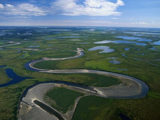 Tundra in Alaska-Danny Lehman-Photographic Print