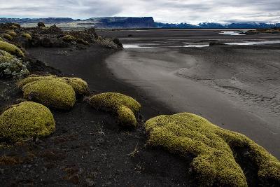 Tundra Moon Walk Iceland- contemart-Photographic Print