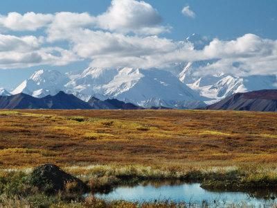 Tundra West of the Eieson Visitors Center, Pond with Beaver House, Mt. Denali, Alaska, USA-Charles Sleicher-Photographic Print