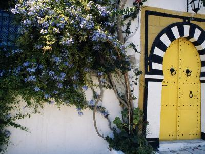 Tunis, Sidi Bou Said, A Decorative Doorway of a Private House, Tunisia-Amar Grover-Photographic Print