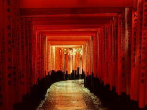 Tunnel of Torii-Arches, Fushimi Inari Shrine, Kyoto, Japan