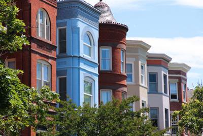 Capitol Hill, Washington by Tupungato