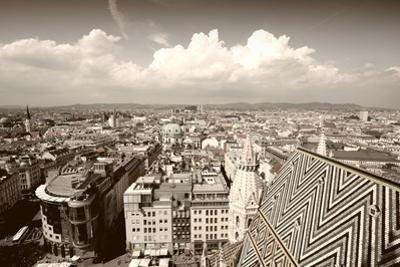 Vienna by Tupungato