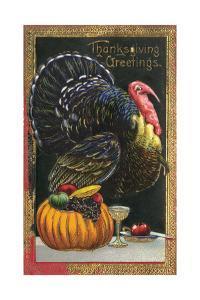 Turkey and Pumpkin