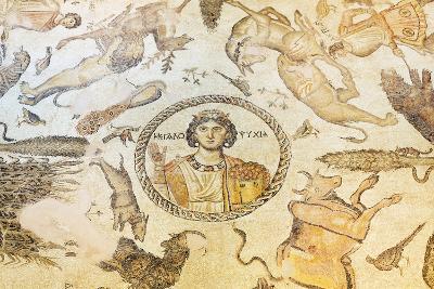 Turkey, Eastern Anatolia, Hatay, Mosaic Museum; Yakto Mosaic-Christian Kober-Photographic Print