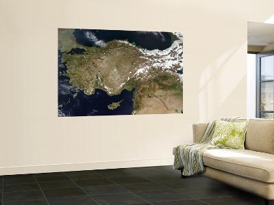 Turkey--Wall Mural
