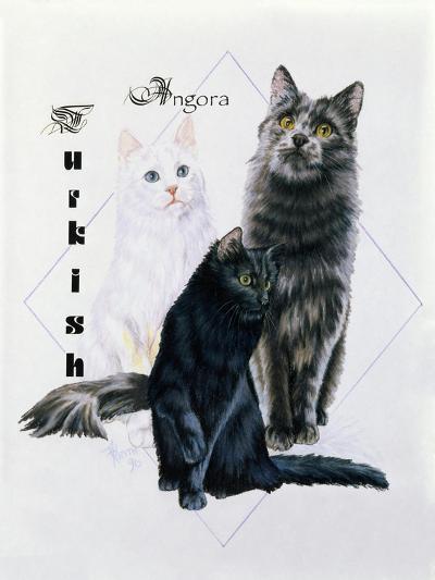 Turkish Angora-Barbara Keith-Giclee Print