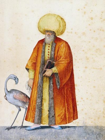 Turkish Man with Flamingo-Jacopo Ligozzi-Giclee Print
