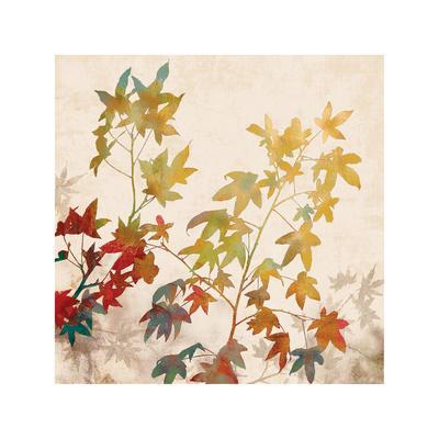 https://imgc.artprintimages.com/img/print/turning-leaves-ii_u-l-f7md880.jpg?p=0