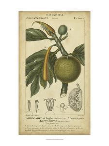 Exotic Botanica IV by Turpin