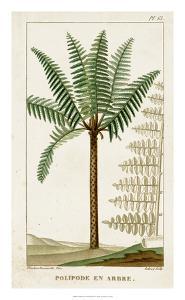 Turpin Exotic Palms III by Turpin