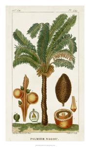 Turpin Exotic Palms VII by Turpin