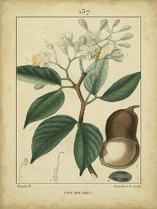 Vintage Turpin Botanical I by Turpin