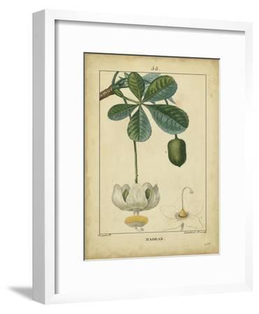 Vintage Turpin Botanical II