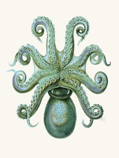 Turquoise Octopus and Squid c-Fab Funky-Art Print