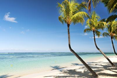Turquoise Sea and White Palm Fringed Beach at Wolmar, Black River, Mauritius, Indian Ocean, Africa-Jordan Banks-Photographic Print