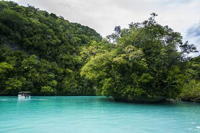 Turquoise Waters in the Rock Islands, Palau, Central Pacific, Pacific-Michael Runkel-Photographic Print